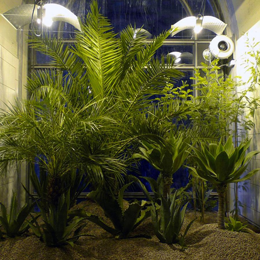public-jardin-lausanne-jar-3